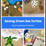 Saving green sea turtles cover photo.