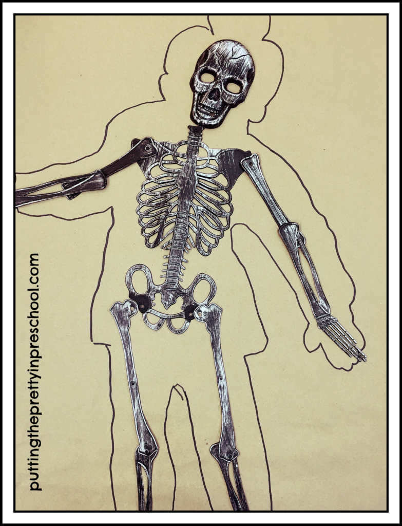 Body tracing with skeleton bones added.