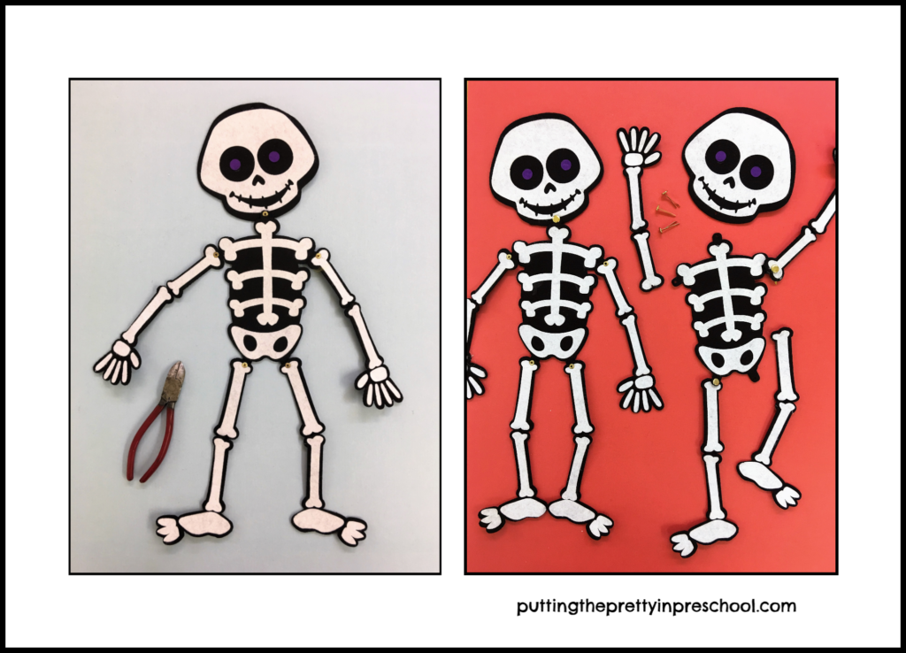 A felt skeleton unhinged. Paper fasteners and a model skeleton aide in helping children put the skeleton back together.