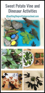 Preschool dinosaur and sweet potato vine sensory, art and nature activities.