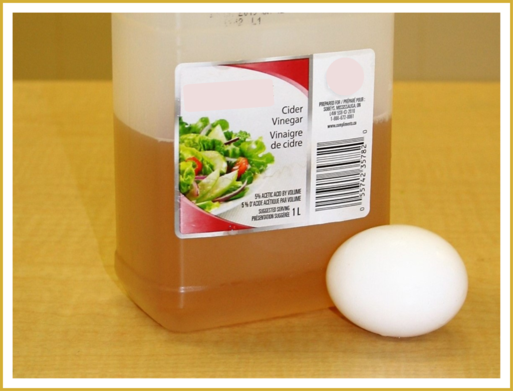 A container of cider vinegar and an egg.