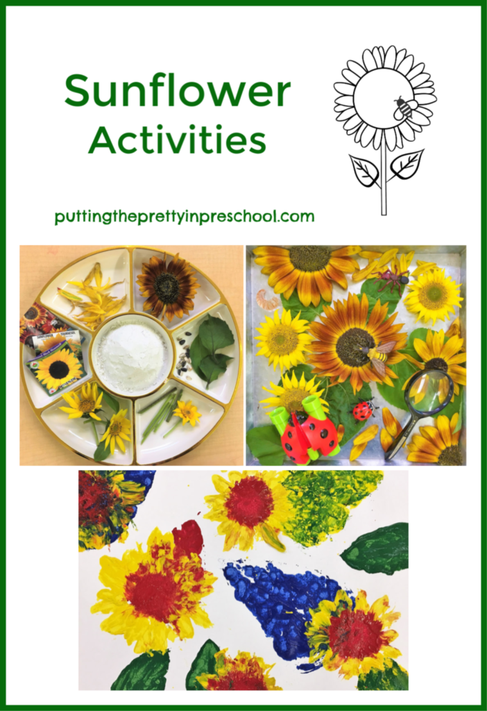 Art, nature and sensory activities with a variety of sunflowers and their parts.