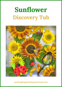 Sensory tub with sunflower heads and leaves, insects, binoculars and a magnifying glass.