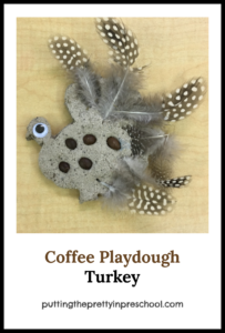 Playdough turkey made with easy to make coffee dough, feathers and espresso beans. An all-ages Thanksgiving Day activity.