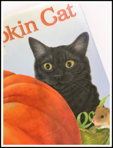 Pumpkin Cat by Anne Mortimer is a delightful children's book in which a mouse shows a cat the different stages of pumpkin growth,