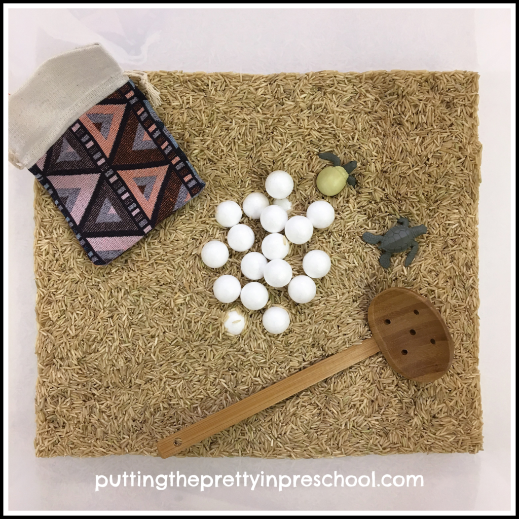 Sea turtle egg and hatchling rice sensory bin.