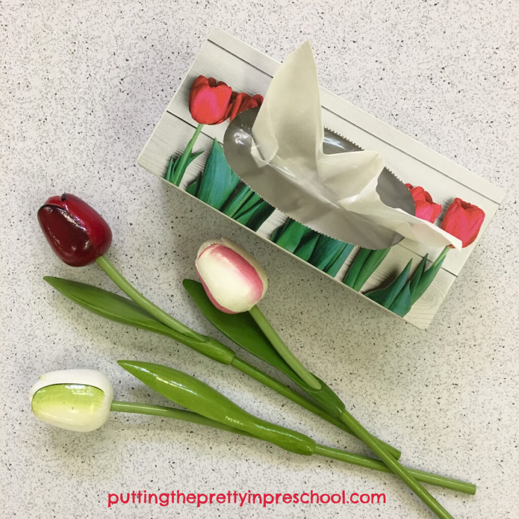 Tulip themed tissue box that is an inspiration for the tulip painting project.