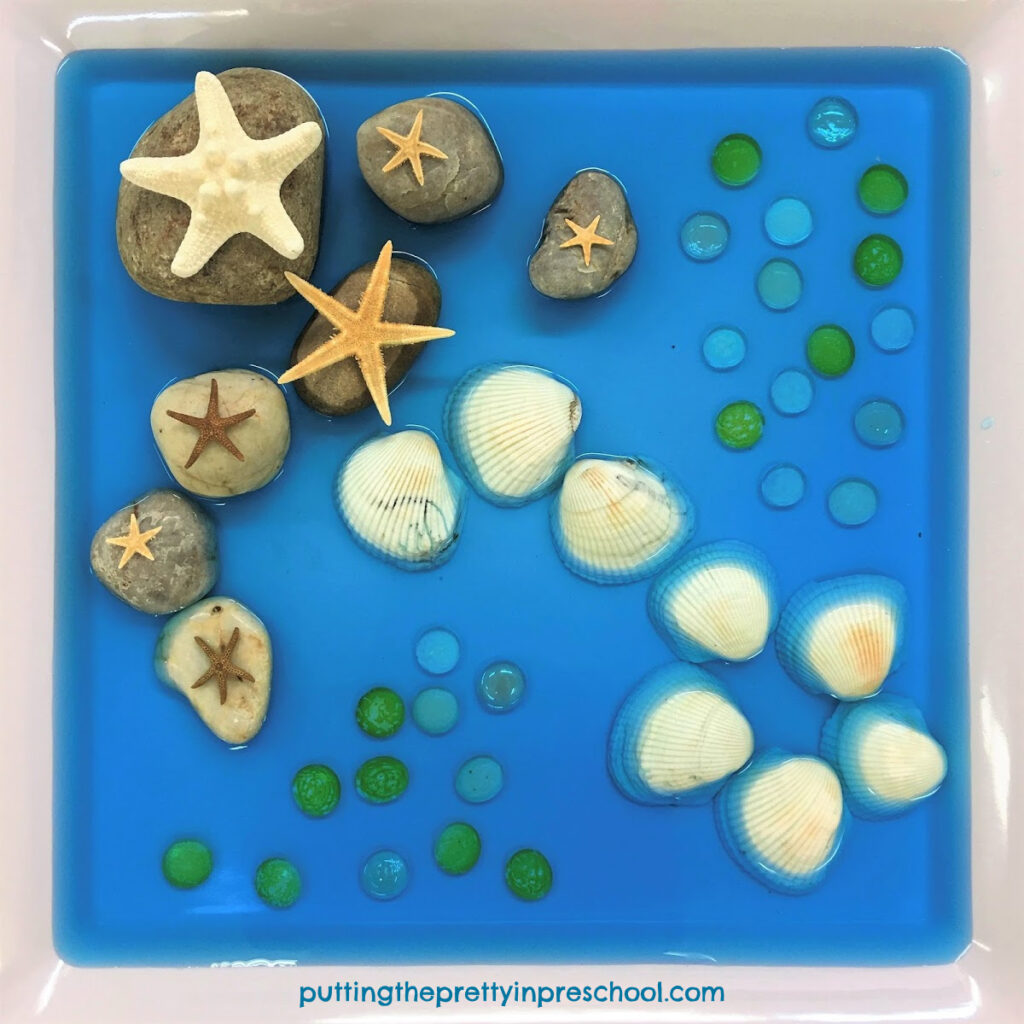 Sea star sensory tray with different sized sea stars and rocks, shells, and gems. The base for the sensory tray is blue water.