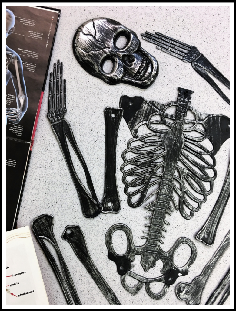 Books featuring human bodies with detailed pictures of skeletons.