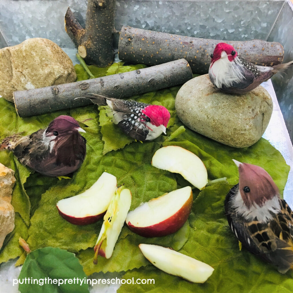 Small world with apples, bird figurines, tree blocks, rocks, and leaves.