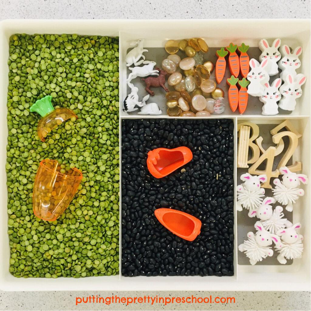 Carrot and bunny-themed sensory tray.