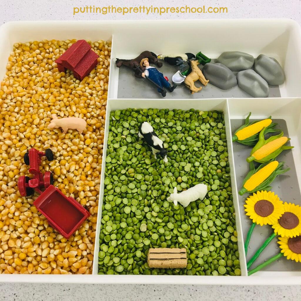 Farm sensory tray with a corn kernel and split pea base.