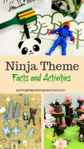 Ninja theme featuring sensory, small world, art, large motor, and pretend play activities. Ninja facts and picture book inspiration included.