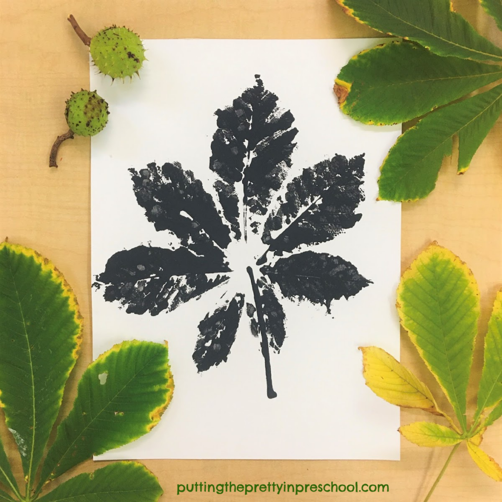 Horse chestnut leaf paint print in a black and white color scheme.
