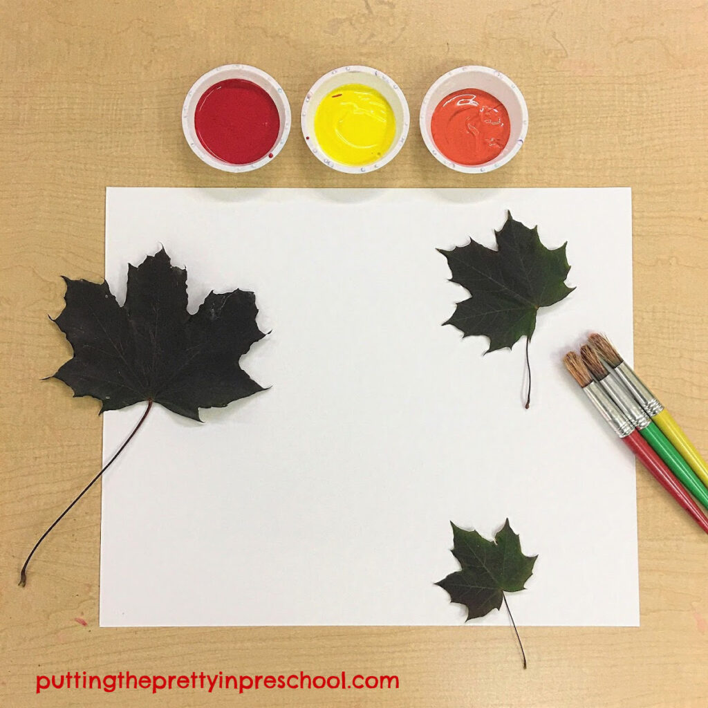Invitation to paint maple leaves to make leaf prints.