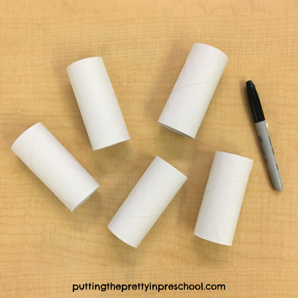 Toilet paper rolls ready for crafting.