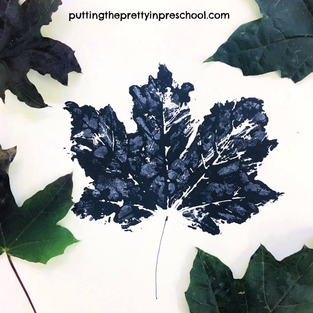 Maple leaf paint print with black tempera paint.