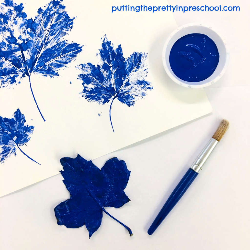 Maple leaf paint prints with blue tempera paint.