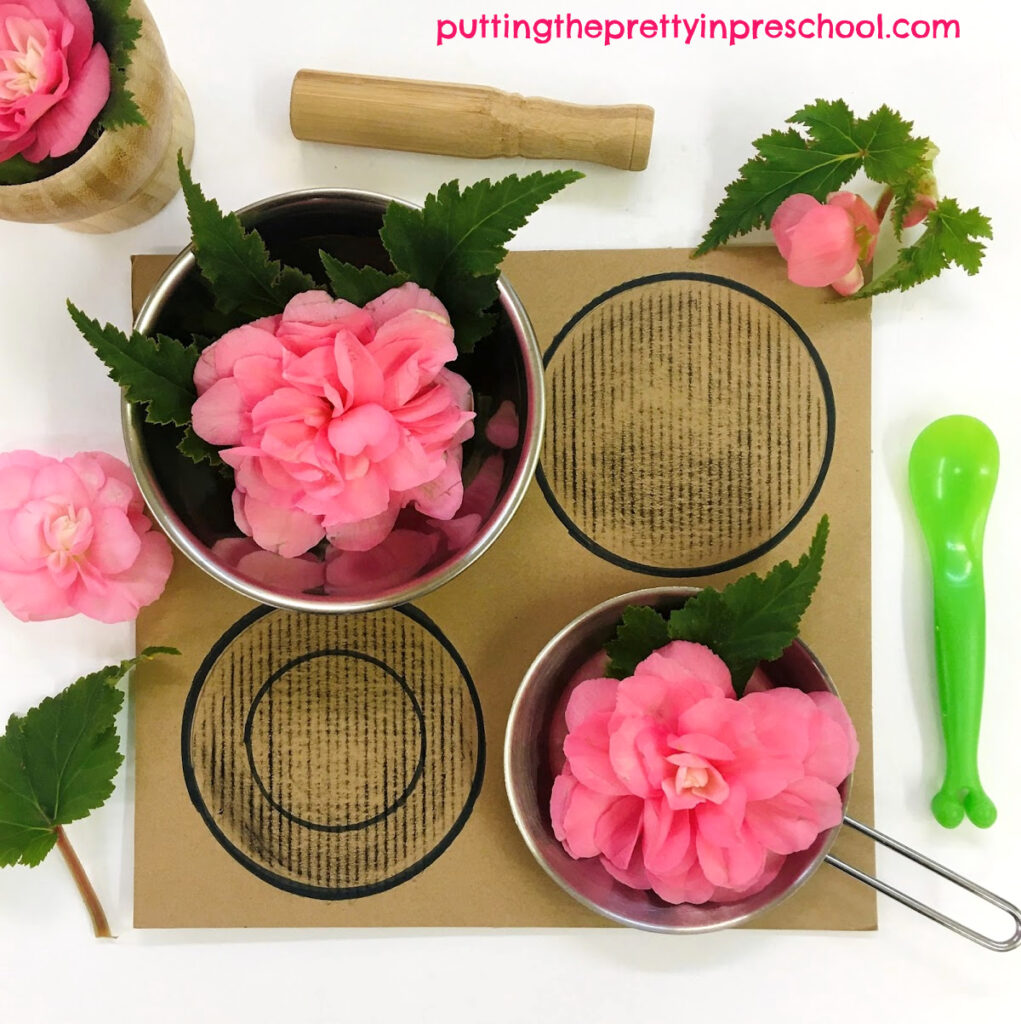 Flower-themed indoor mud kitchen. Nonstop pink begonia leaves and flowers, mortar and pestle, pots and pans, and a cardboard stove top complete the play invitation.