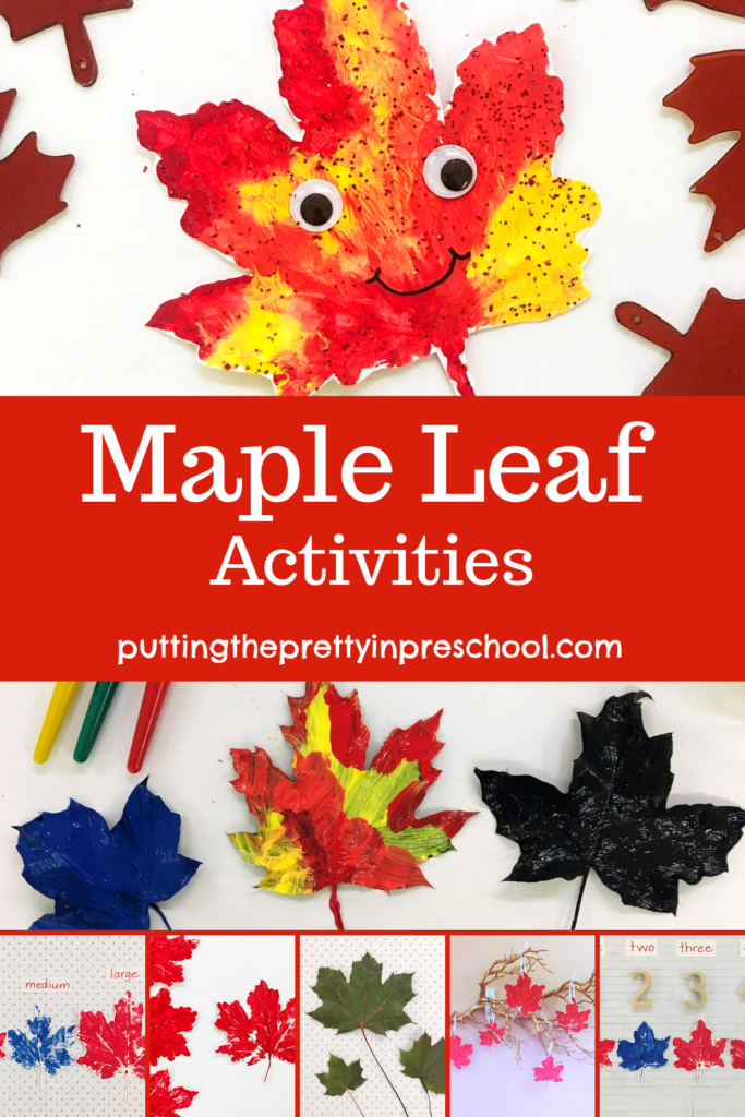 Maple leaf paint print activities. Art, math, and display ideas for maple leaves.