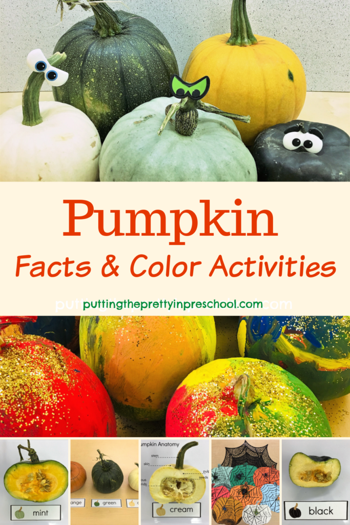 Pumpkin facts and color activities. Anatomy, color matching, and art activities.