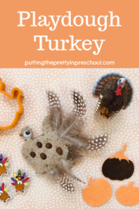 Easy to make playdough turkey. Feathers, espresso beans, and a wiggly eye complete the bird.