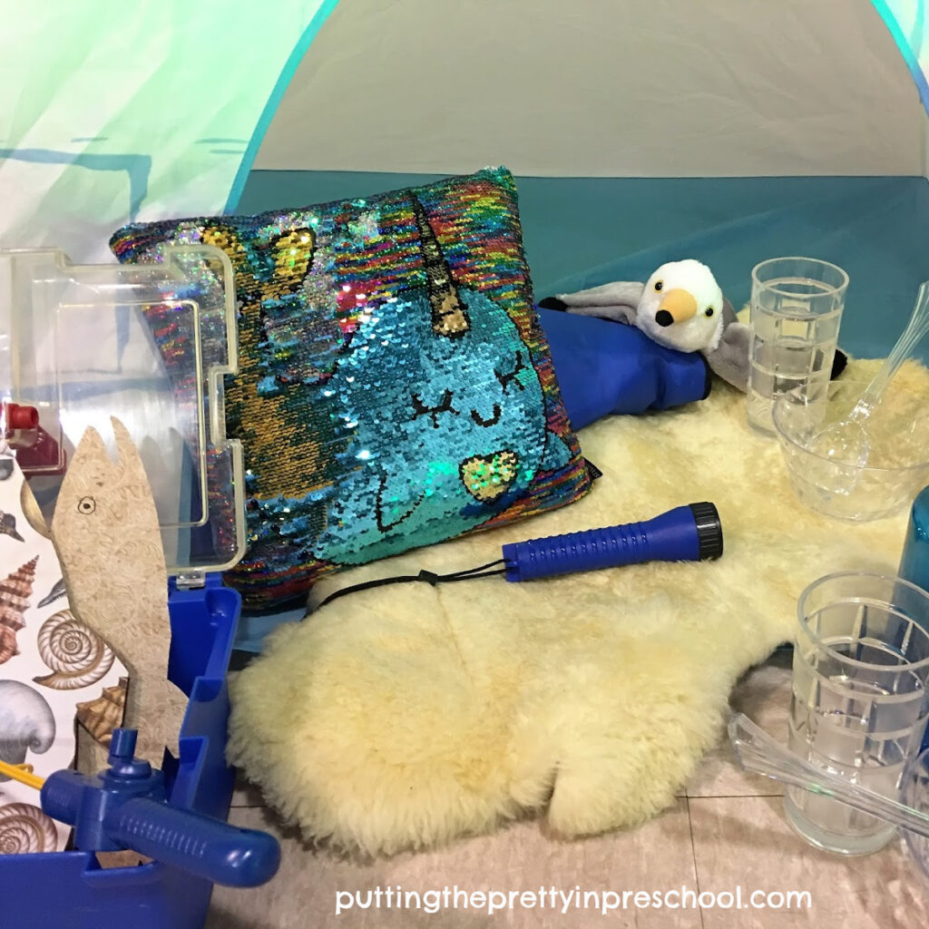 Glam igloo dramatic play center with polar themed accessories.