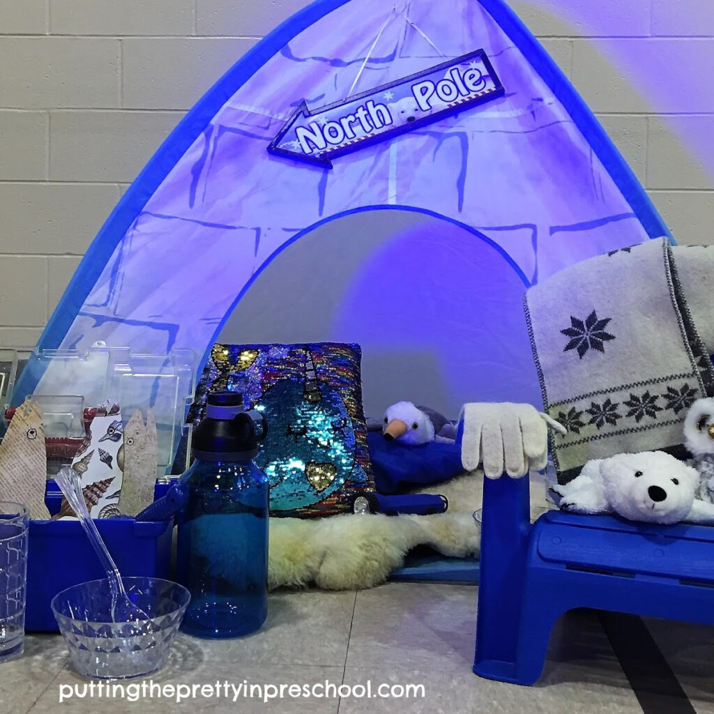 An arctic pretend play center with lighted igloo, polar animals, and glam accessories.