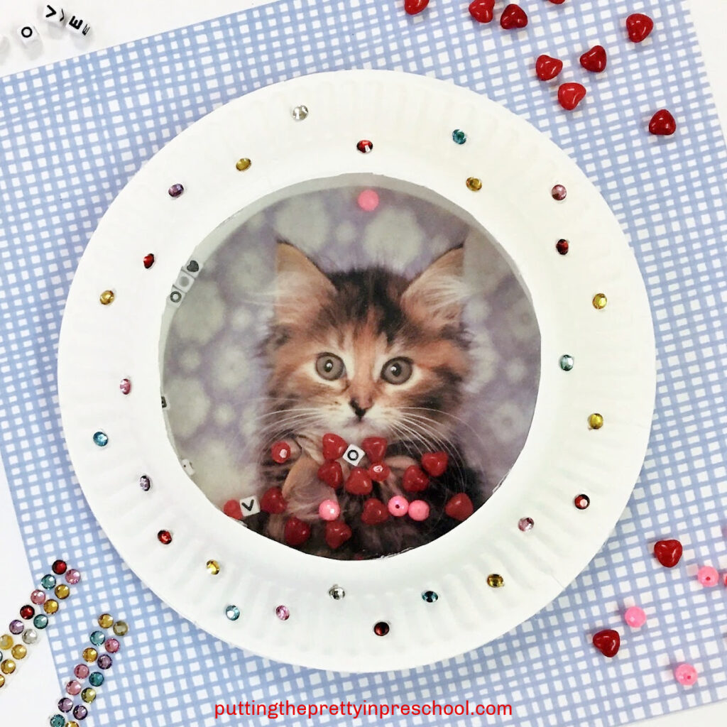 This paper plate ocean drum can be personalized with a picture of a favorite pet.