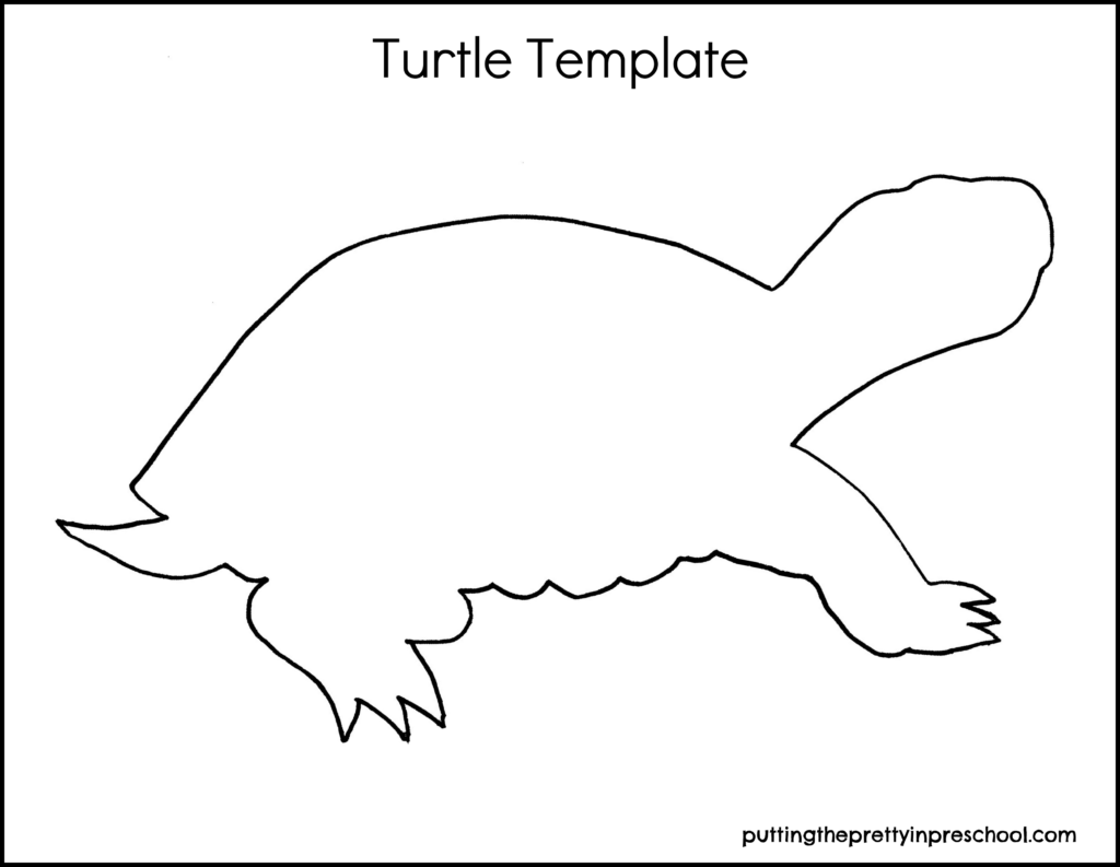 Turtle template for art and craft activities.